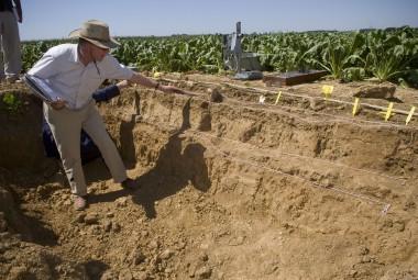 Étude de la structure des sols cultivés.
