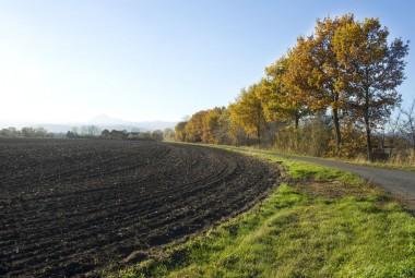 Agroforesterie. Produires autrementement