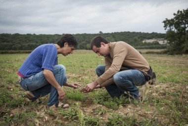 Une productrice de blé tendre bio pour le pain bio