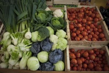 Agroforesterie. Commercialisation de produits biologiques.