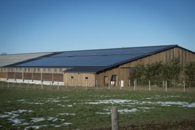 Bâtiment d'élevage en bois (charpente laméllé-collé et bardage douglas) équipé de panneaux solaires.