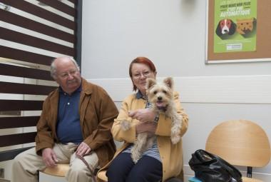 Propriétaires et leur Yorkshire en salle d'attente de vétérinaire.