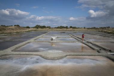 Salines de marais salants. La fleur de sel est cueillie délicatement à la surface de l'eau à l'aide d'une « lousse ».
